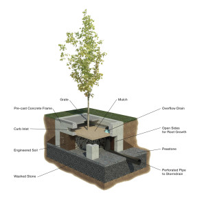 Schematic of a tree filter system depicting open frame concept and underdrain connection to nearby stormdrains.